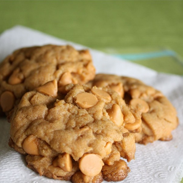 Chocolate Chip Pudding Cookies – CookieRecipes.com